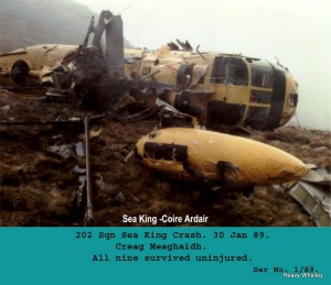 1989 Sea King crash Jan