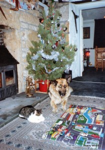 1990 Teallach and Clova at Hopeman