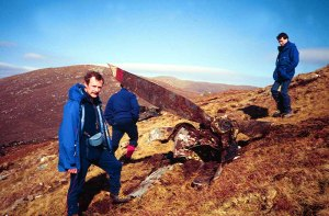1990 Shackelton Crash Harris