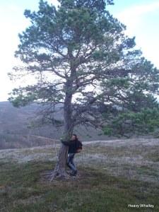 Tree hugs!