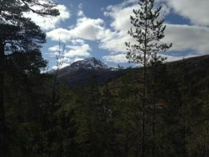 Sgurr Na Lapaich 1036 metres Munro top 153