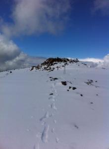 Summit of Sgurr Na Fainnaidh. Photo G.M