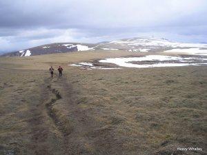 The Plateau Feshies