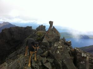The small summit of Sgurr McConnich
