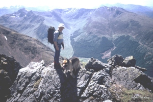 1984 Tranters Traverse teallach heavy