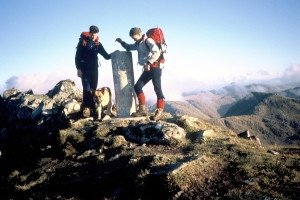 My Dog Teallach on the South Clunnie a 9 Munro day with the Saddle - he was a compleatist and lifted his leg to mark the summit on ever cairn - He did these 89 Munros in a day on 12 separate occasions!