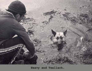 Teallach swiming