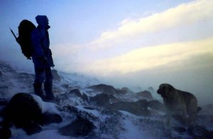 Teallach winter wind 1989