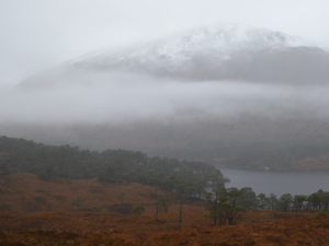 Misty Affric with snow above 1500 feet.