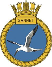 Gannet-Crest