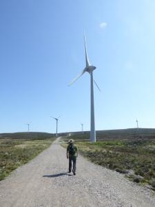 Wee man - Big wind Farm.