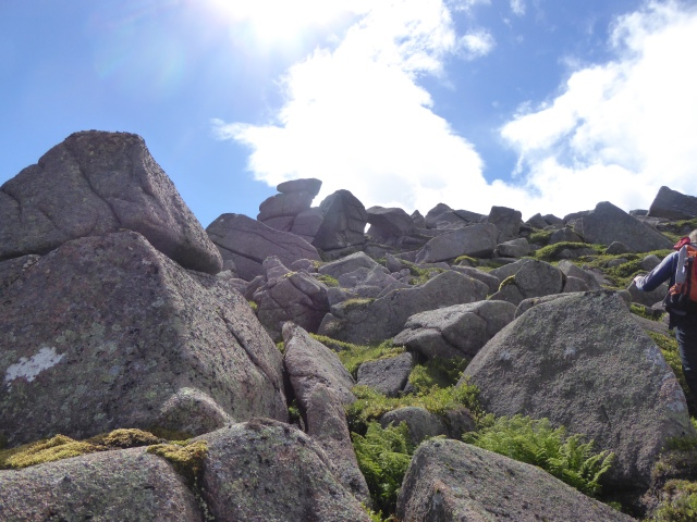 The small Cairngorm rocks sculpted by the weather.