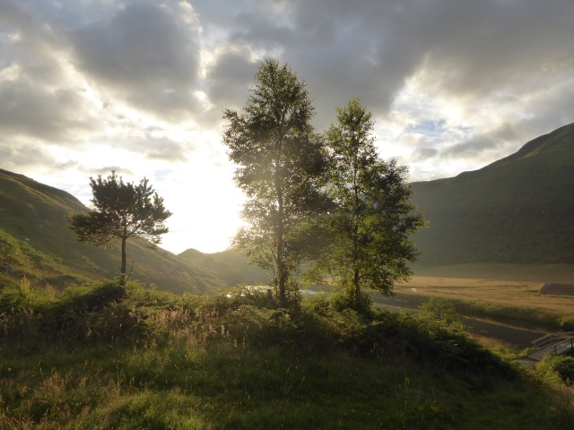 The early morning light in windy Affric