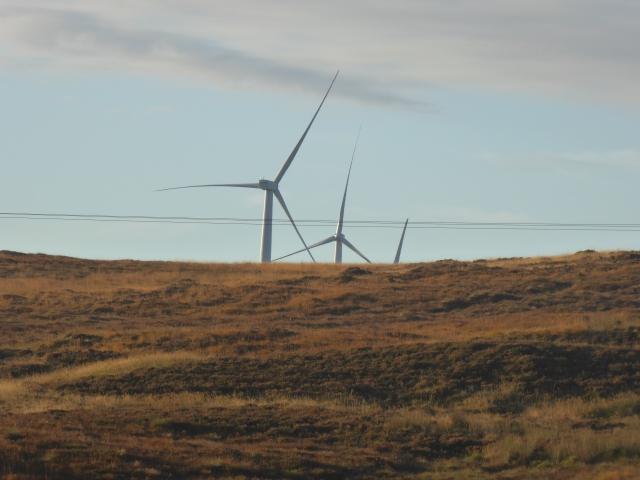 Lots of Wind farms