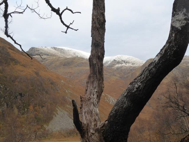 Aonach Beag with fresh snow.