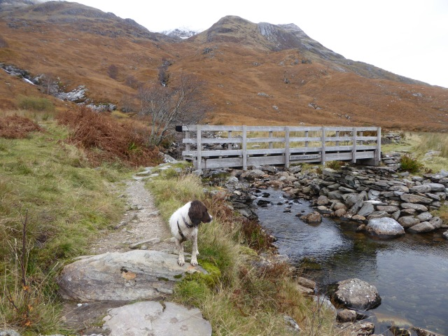 The bridge at Steall Falls