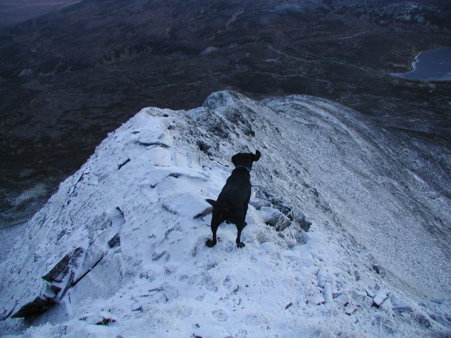 On the ridge on another day